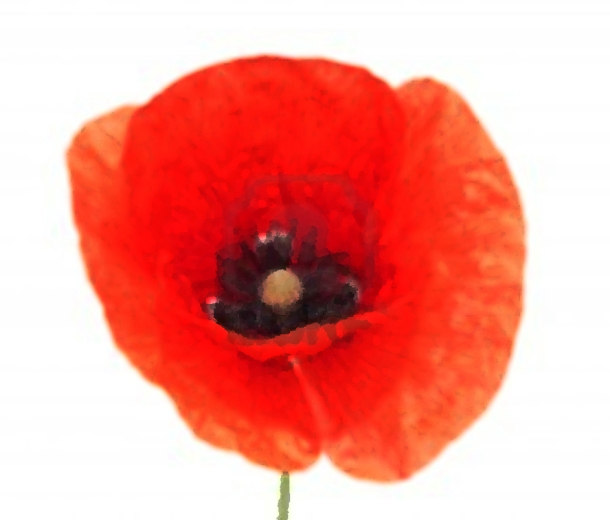 Rememberance Day 11.11.11